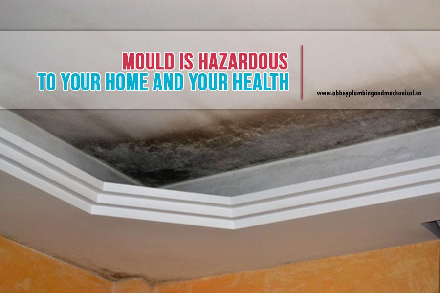 hazardous mould